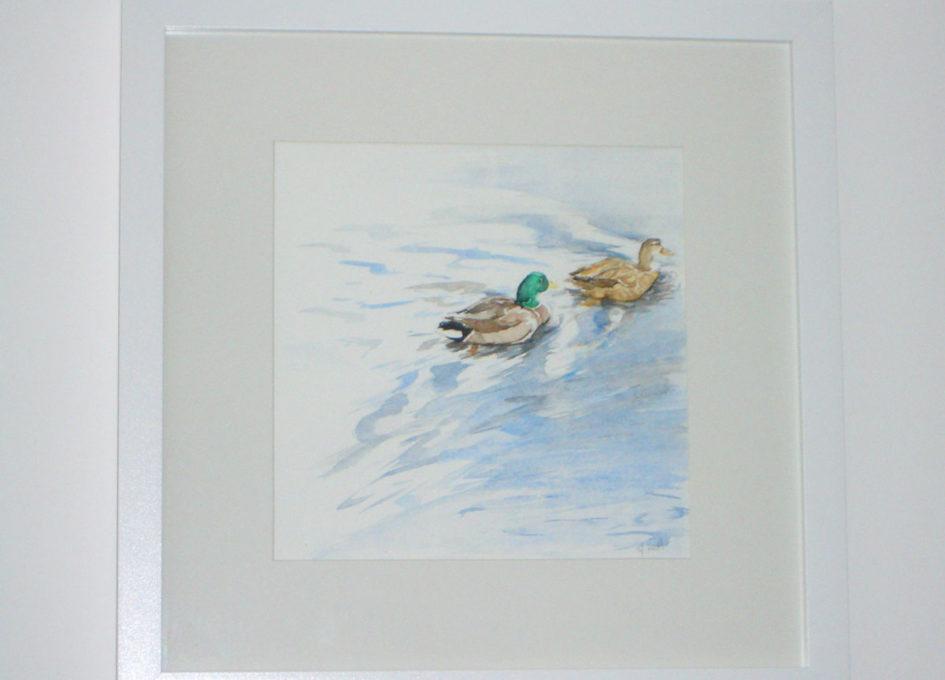 Framed ducks watercolour by Annie Hall