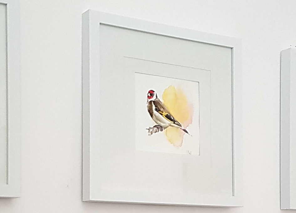 framed goldfinch watercolour