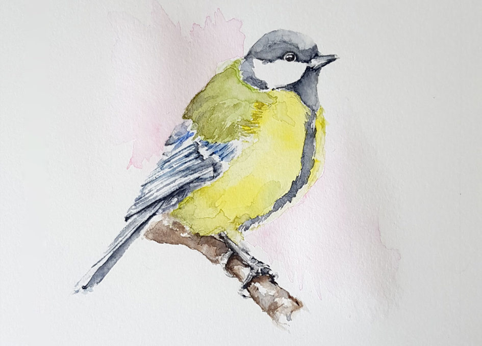 great tit original watercolour
