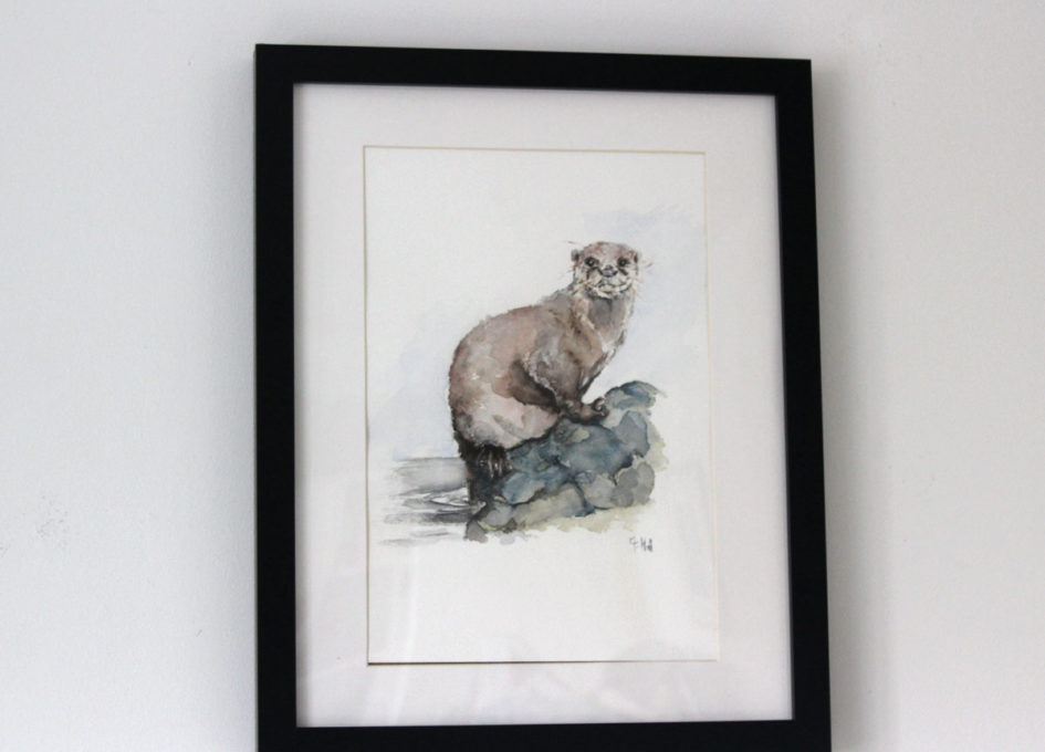 Framed otter watercolour