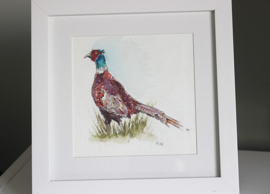 framed pheasant watercolour