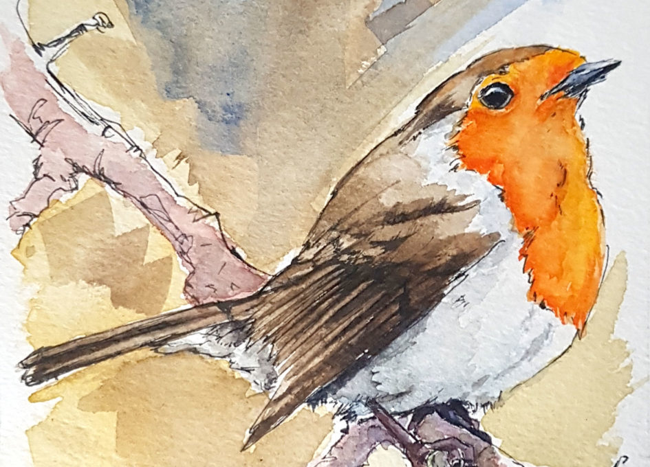 original pen and wash watercolour of a robin